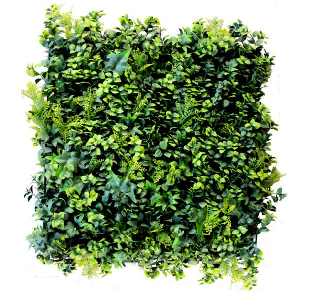 Muros verdes cotiza en l nea planta ox geno for Plantas muro verde