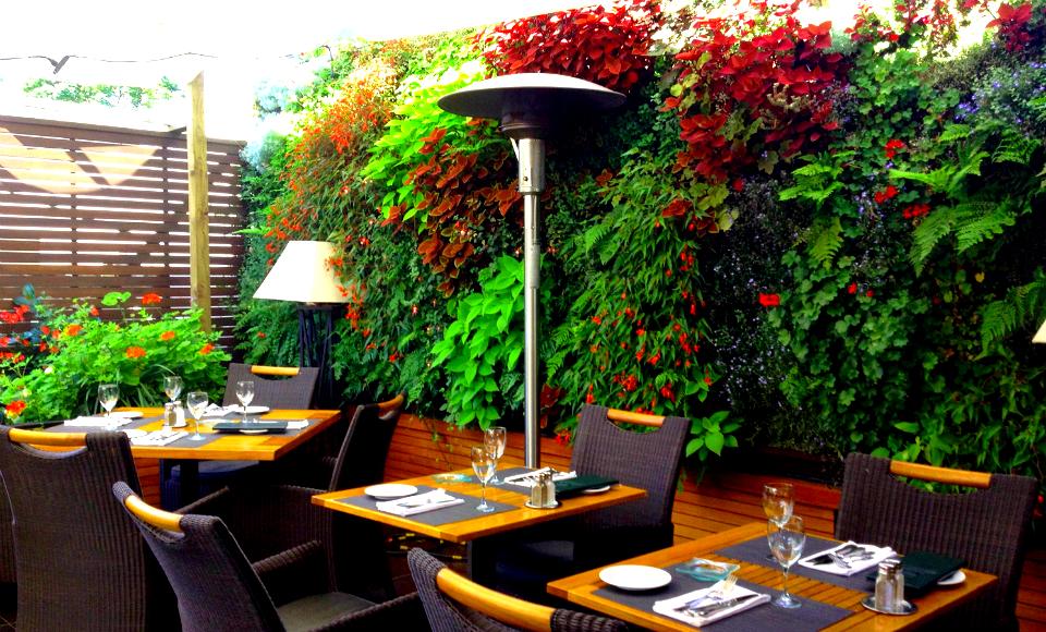 Planta ox geno muro verde restaurante planta ox geno for Plantas muro verde