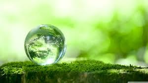 Seres humanos ultraglobalizados VS Madre Naturaleza