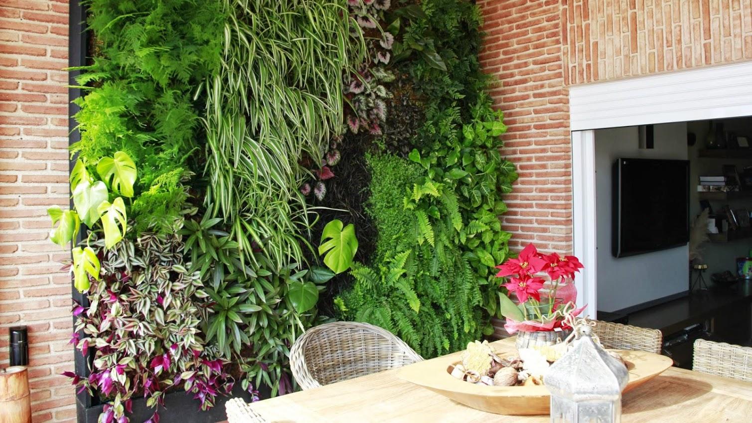 Muro verde para tu casa y oficina planta ox geno for Muros de plantas verticales