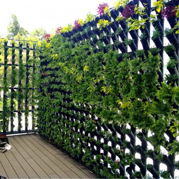M dulos para muro verde cultivo y decorativo 92cm base x for Muro verde sistema constructivo