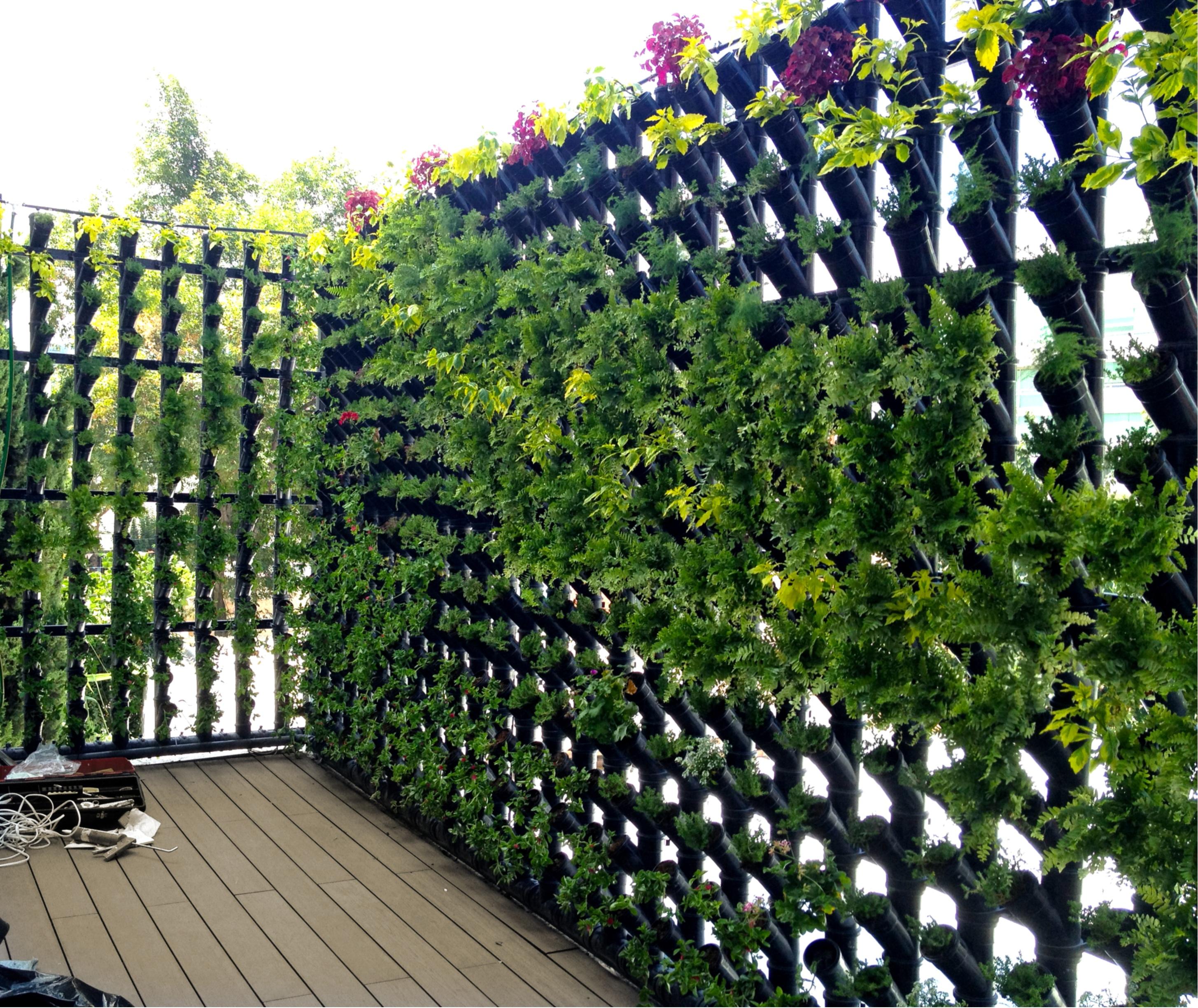 M dulos para muro verde cultivo y decorativo 92cm base x for Plantas para muros verdes verticales