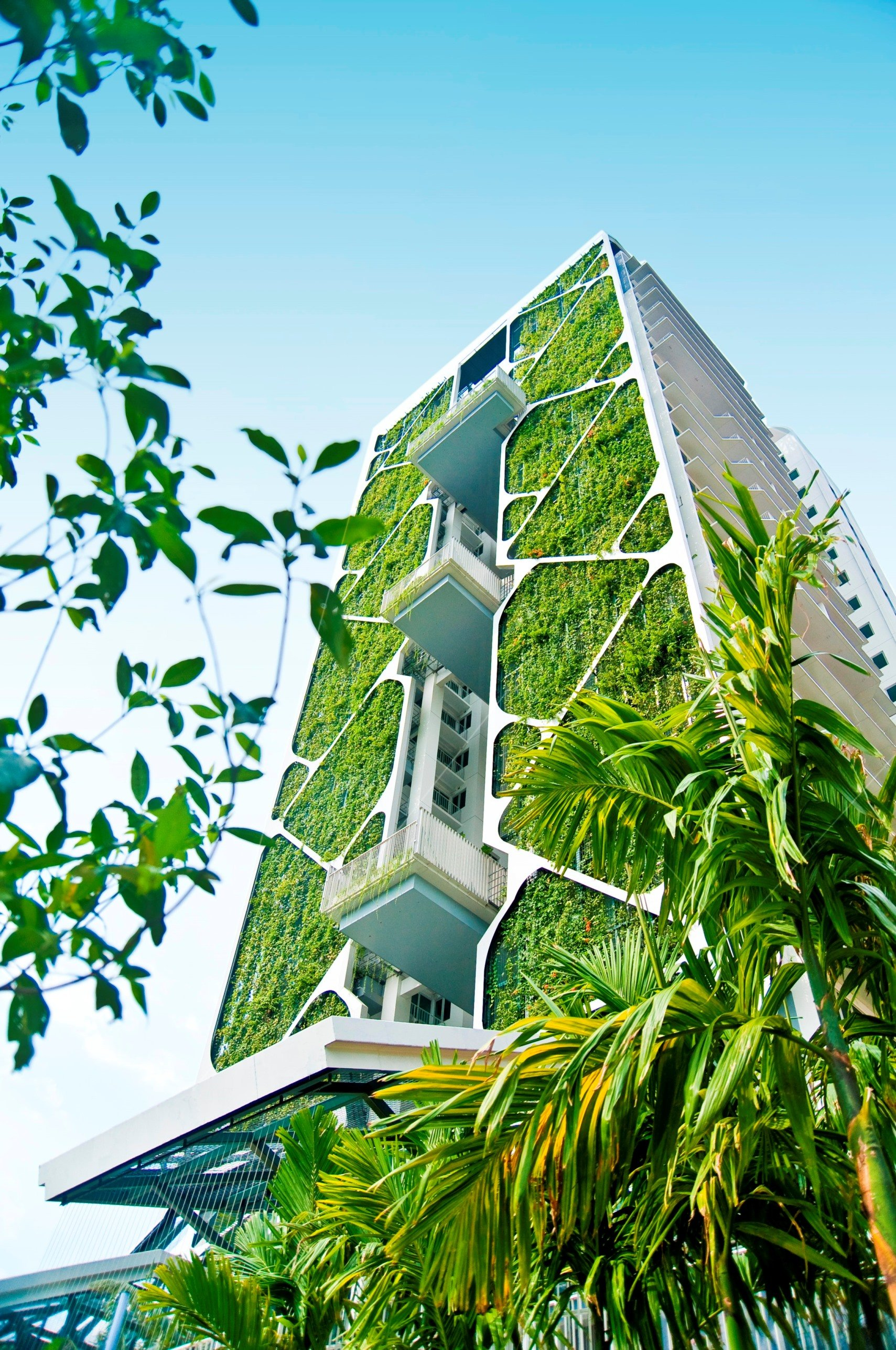 Que son los muros verdes y como pueden cambiar tu vida for Sustainable homes design