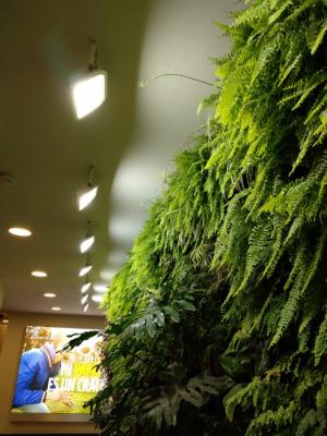 iluminacion_muro_verde