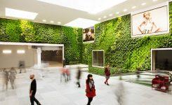 Muros Verdes en la Ciudad sus Beneficios y Funciones
