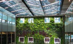 Muros verdes y su impacto ambiental