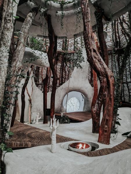 decoracion de interiores con plantas, azulik