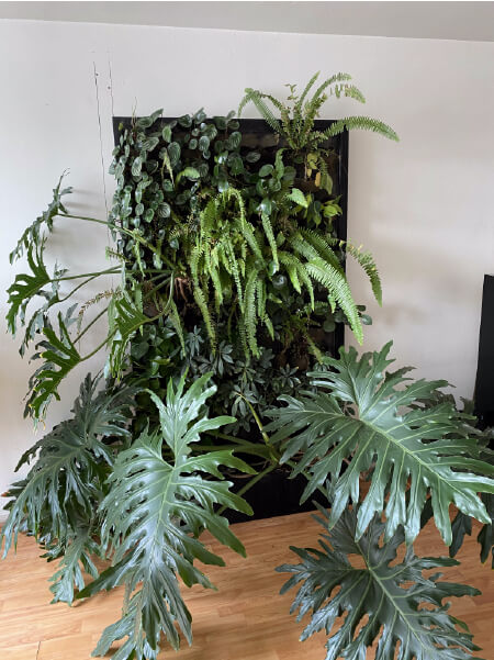 huerto vertical ornamental